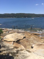 La Perouse beach with SCUBA divers
