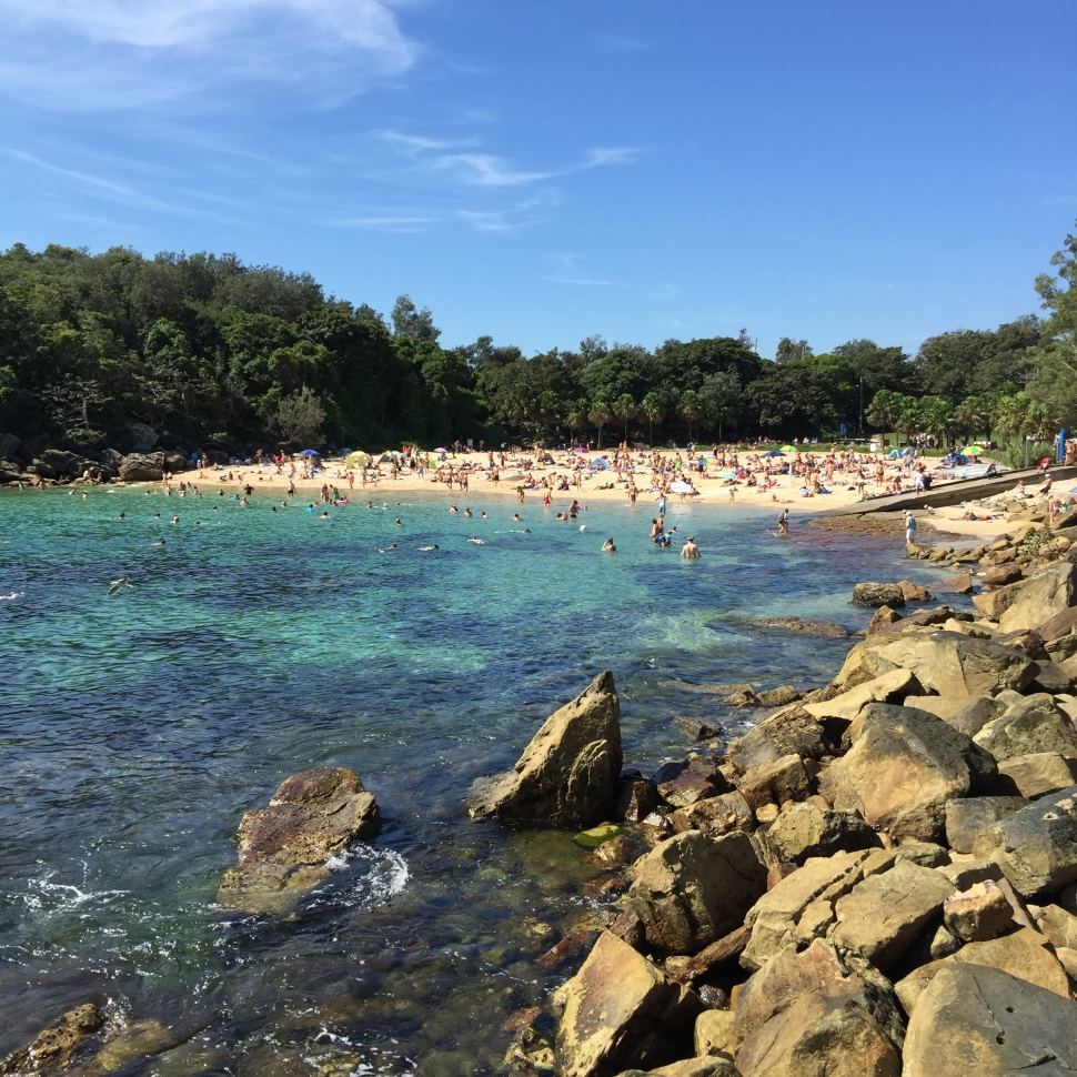 Shelly Beach Sydney Australia