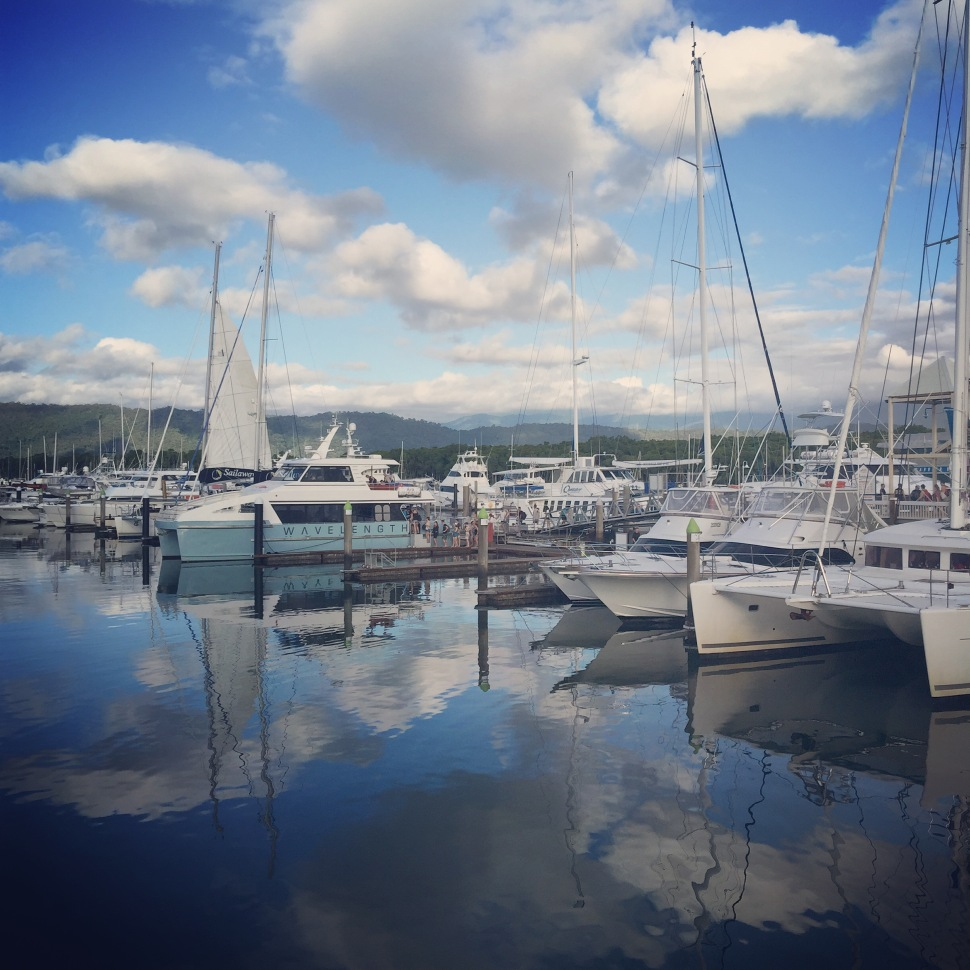 reef marina port douglas qld