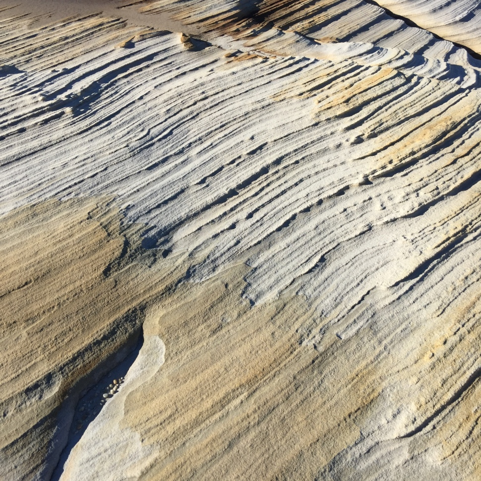 Rock striations Royal National Park