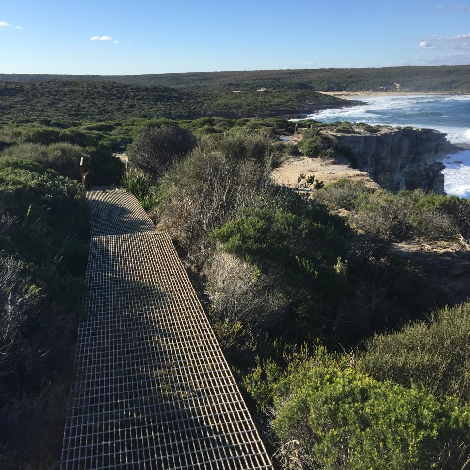 Metal boardwalk royal national park